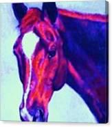 Horse Art Horse Portrait Maduro Psychedelic Canvas Print