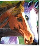 Horse Bff Canvas Print