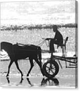 Horse Cart Canvas Print