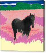 Horse In A Dreamfield 7 Canvas Print