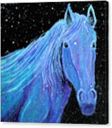 Horse-midnight Snow Canvas Print