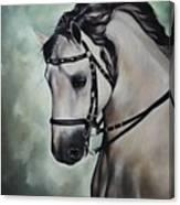 Horse N.1 Canvas Print