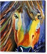 Horse One Canvas Print
