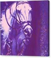 Horse Painting Jumper No Faults Lavender Canvas Print