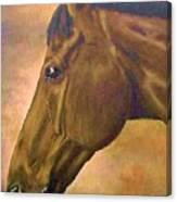 horse portraint PRINCETON pastel colors Canvas Print