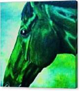 horse portrait PRINCETON blue green Canvas Print