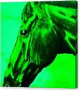 horse portrait PRINCETON green Canvas Print