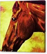 horse portrait PRINCETON purple brown yellow Canvas Print
