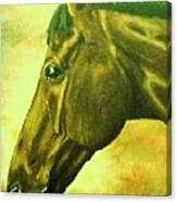 horse portrait PRINCETON soft colors Canvas Print