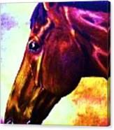 horse portrait PRINCETON wow purples Canvas Print