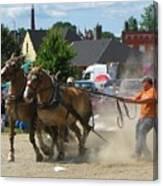 Horse Pull 3 Canvas Print