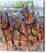 Horse Pull At The Fair Canvas Print