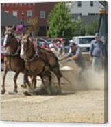 Horse Pull K Canvas Print