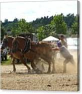 Horse Pulling Team Canvas Print
