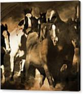 Horse Stampede Art 08a Canvas Print