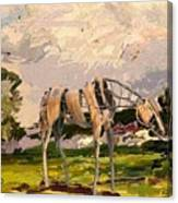 Horse Statue In The Field Canvas Print