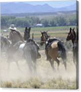 Horse Thief Canvas Print