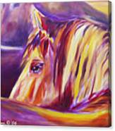 Horse World Detail Canvas Print