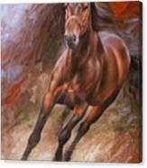 Horse2 Canvas Print