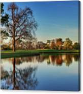 Horsepen Creek #8 Canvas Print