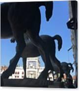 Horses Asses Canvas Print