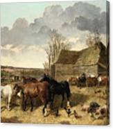 Horses Eating From A Manger, With Pigs And Chickens In A Farmyard Canvas Print