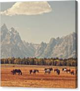 Horses Grazing In Front Of The Teton's Canvas Print