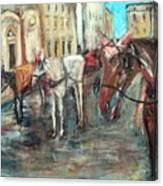 Horses In Florence Canvas Print