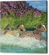Horses In Stream Canvas Print