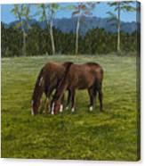Horses Of Romance Canvas Print
