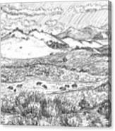 Horses On Summer Range Field Sketch Canvas Print