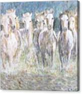 Horses Running In Water Canvas Print