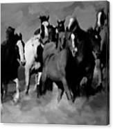 Horses Stampede 01 Canvas Print