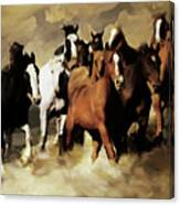 Horses Stampede 091 Canvas Print