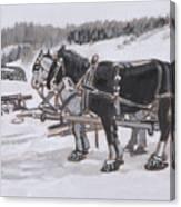 Horses Wearing Snowshoes Historical Vignette Canvas Print