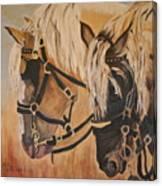 Horseshoe And Dan Canvas Print
