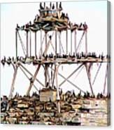 Horseshoe Reef Lighthouse 3 Canvas Print