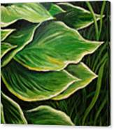 Hostas And Grass Painting Canvas Print