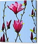Hot Pink Magnolias Canvas Print
