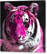 Hot Pink Tiger Canvas Print