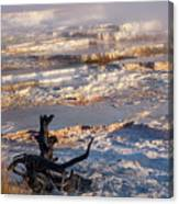 Mammoth Hot Springs One Canvas Print