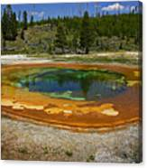 Hot Springs Yellowstone National Park Canvas Print