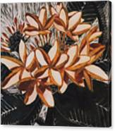 Hothouse Flowers Canvas Print