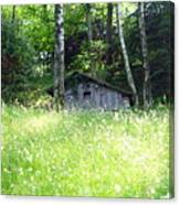 House In The Wood Canvas Print