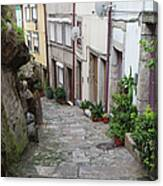 Houses Along Alley In The Old Town Of Porto Canvas Print