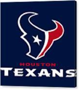 Houston Texans Canvas Print