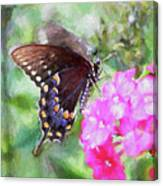 How Beautiful It Is Canvas Print
