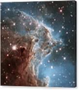 Hubble's 24th Birthday Snap Of Monkey Head Nebula Canvas Print