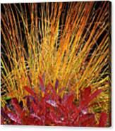 Huckleberry Glow Canvas Print