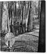 Hudson Mills Disc Golf Canvas Print
